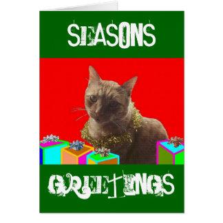Zack el gato de Navidad Tarjeta Pequeña