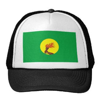 Zaire-Congo flag Hat