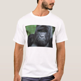Zaire, Virungas National Park. Portrait of T-Shirt