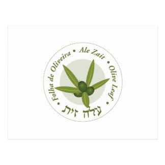 Zait verde oliva de la cerveza inglesa de folha de postales
