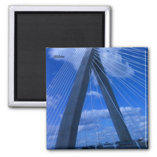 Zakim Bridge, Boston Magnet