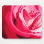 Zambúllase en rosa tapetes de ratón