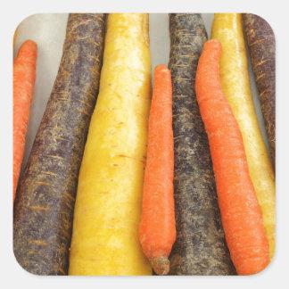 Zanahorias amarillas y anaranjadas púrpuras crudas pegatina cuadrada