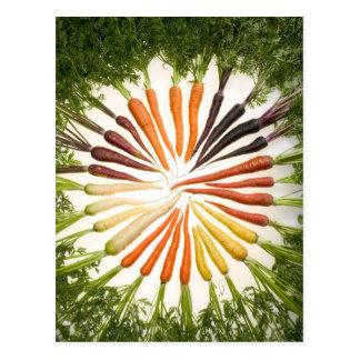 Zanahorias coloridas de la diversión tarjetas postales