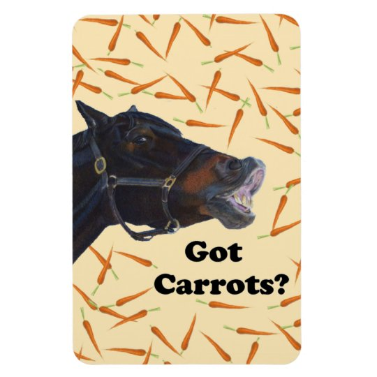 Zanahorias conseguidas lindas caballo del potro imán foto rectangular
