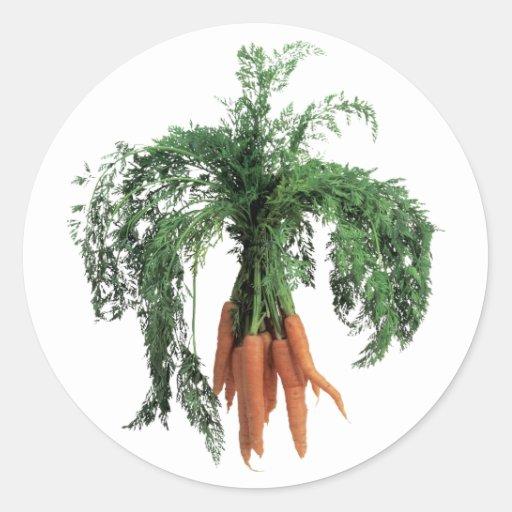 Zanahorias Pegatinas Redondas