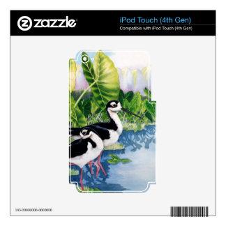 Zancos hawaianos (Ae'o) iPod Touch 4G Calcomanías