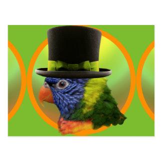 Zanny, Circus Parrot Riot Postcard