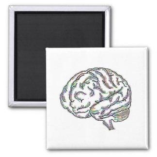 Zany Brainy 2 Inch Square Magnet