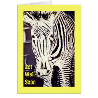 Zany Zebra, Get Well Soon Card