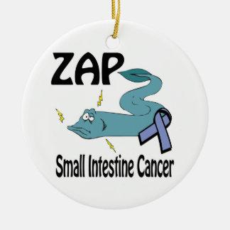 ZAP al cáncer del intestino delgado Adorno