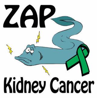 ZAP al cáncer del riñón Esculturas Fotográficas