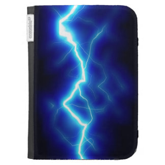 Zap Cases For The Kindle