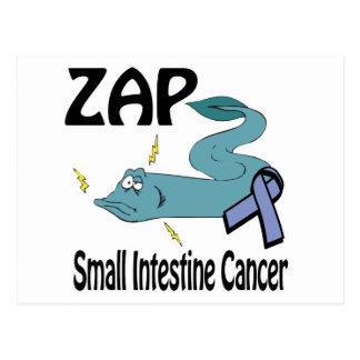 ZAP Small Intestine Cancer Postcard