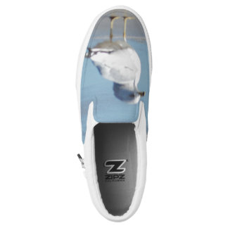Zapatos de la cubierta de la gaviota zapatillas