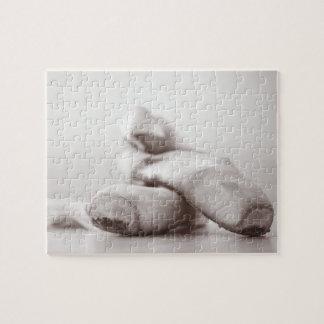 Zapatos de Pointe del ballet en la plantilla de Da Puzzles Con Fotos