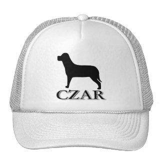 Zar del perro gorra
