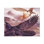 Zarapito que persigue un cuervo impresión en lienzo estirada