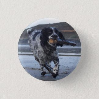 Zarha the Spaniel badge Pinback Button