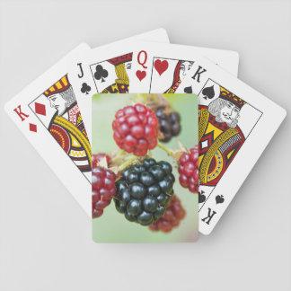 zarzamoras baraja de cartas
