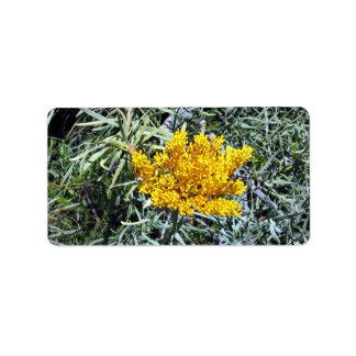 Zarzo amarillo brillante etiquetas de dirección