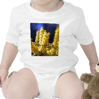 Zarzo Camisetas