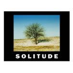 ZAZ432 Solitude Poster Post Cards
