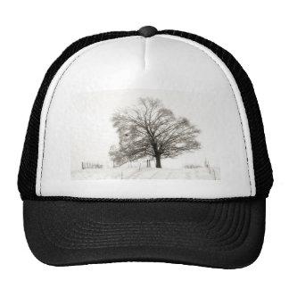 ZAZ434 Winter Tree Trucker Hat