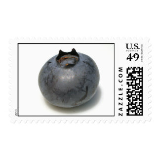 Zazzle Blueberries I Have Known 13 Postage