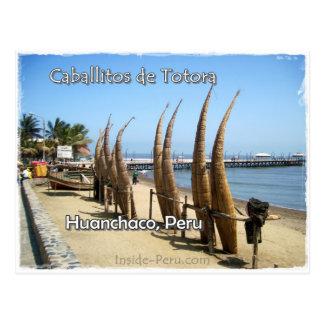 Zazzle Caballitos de Tortora.JPG Post Card