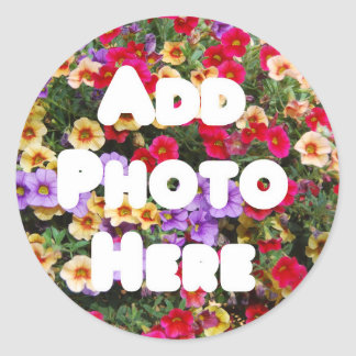 Zazzle Template Design My Own Photo Present Upload Classic Round Sticker