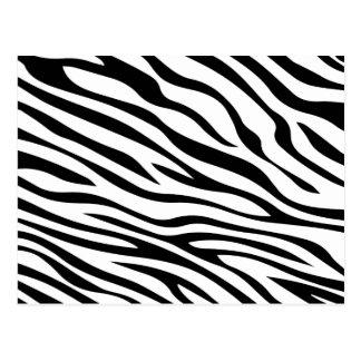 Zebbra Stripes Black and White Postcard