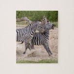 zebra-2-10 rompecabezas