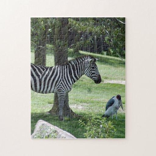 zebra-2-3 rompecabezas con fotos