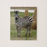 zebra-2-8 puzzles