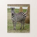 zebra-2-8 rompecabezas