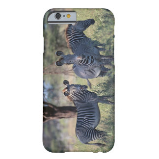 Zebra 2 barely there iPhone 6 case