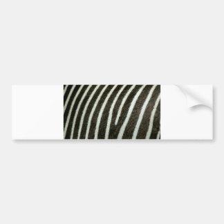 Zebra 2 bumper sticker