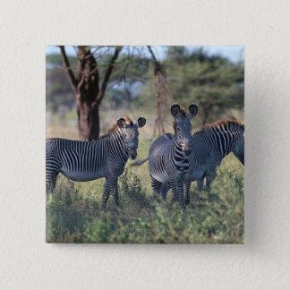 Zebra 2 button
