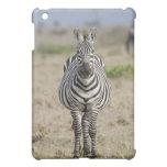 Zebra 2 iPad mini cover