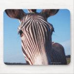 zebra 2 mouse pad