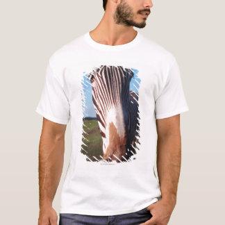 zebra 2 T-Shirt