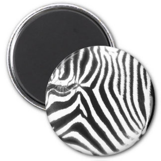 Zebra Abstract Magnet