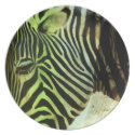 Zebra Abstract Party Plate
