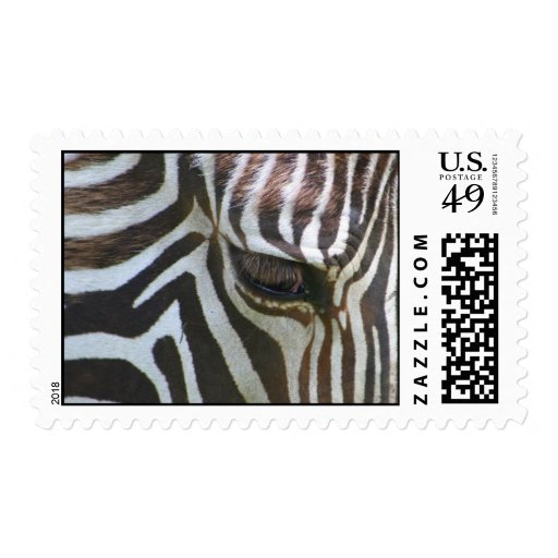 Zebra Abstract Postage