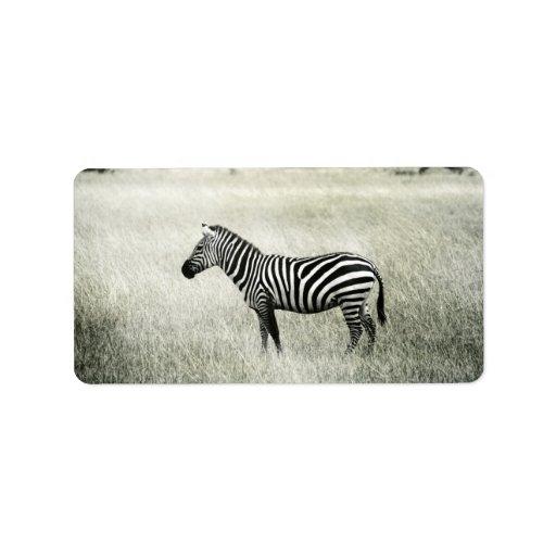 Zebra Address Label | Zazzle