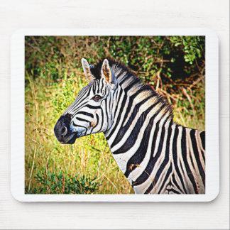 Zebra African Zoo Animal Photo Design Mouse Pad