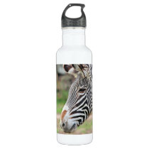 Zebra animal stainless steel water bottle
