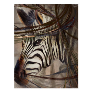 Zebra animals,wildlife,wildlife art,nature gifts postcard
