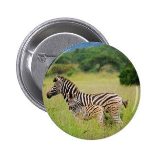 Zebra baby and mom pin